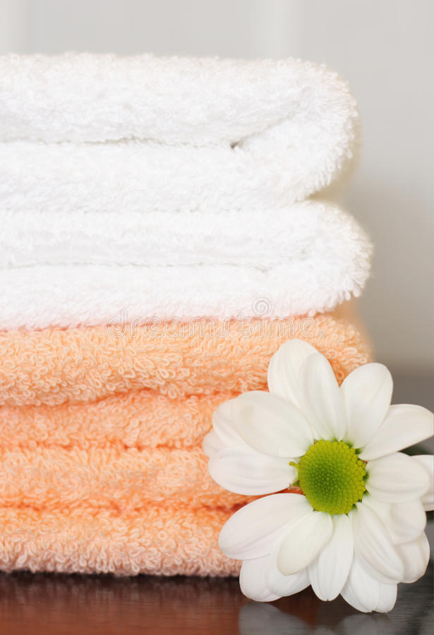 Free Clean Towels And Daisy Royalty Free Stock Photography - 13708937