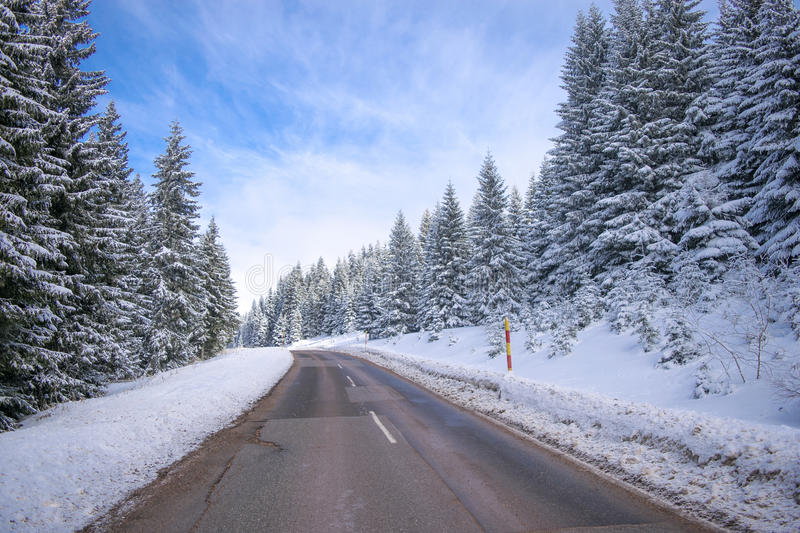 Clean winter road on mountain with turns and curve with trees un. Der the snow royalty free stock photography