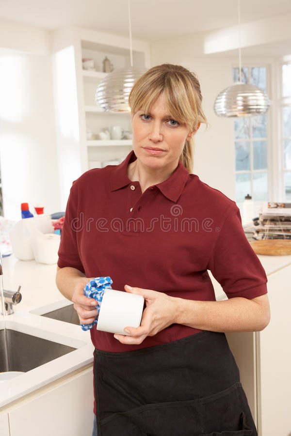 Download Cleaner Working In Domestic Kitchen Stock Image - Image: 18745601