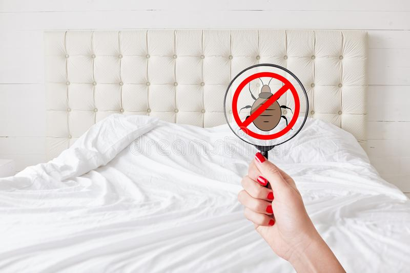 Cleaness and purity concept. Unrecognizable female with red manicure hold lens with stop insects sign detects bed bugs. No bugs th. Ere. Checking sanitation stock photography