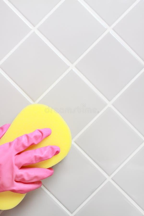 cleaning fotografia stock