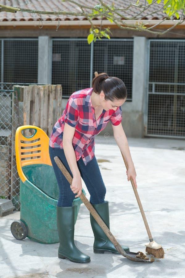 Cleaning czas dla psiarnia asystenta zdjęcia royalty free