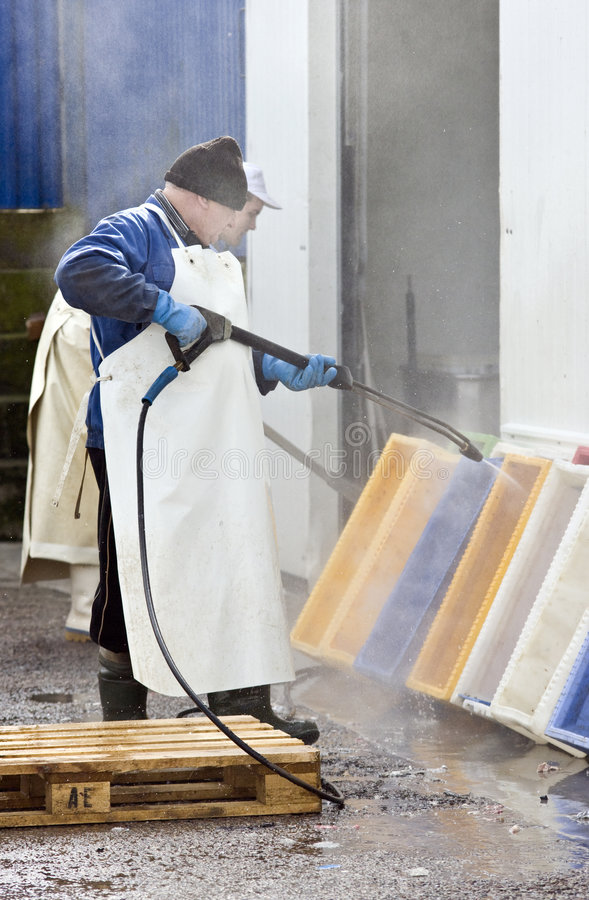 Cleaning fish containers. A senior worker cleaning fish boxes with powerful stream of water stock photo