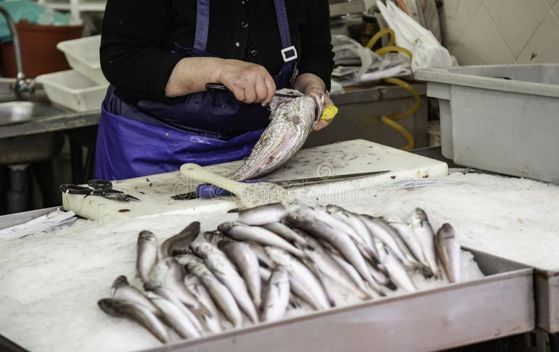 Cleaning fish in a market. Healthy food detail fresh knife seafood filleting raw meat man meal cooking fishing board cutting cod slicing gutting person white stock photography