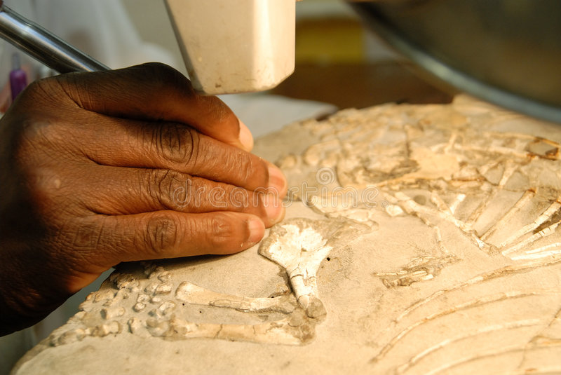 Cleaning a fossil stock photo