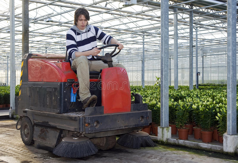Cleaning a glasshouse stock photography