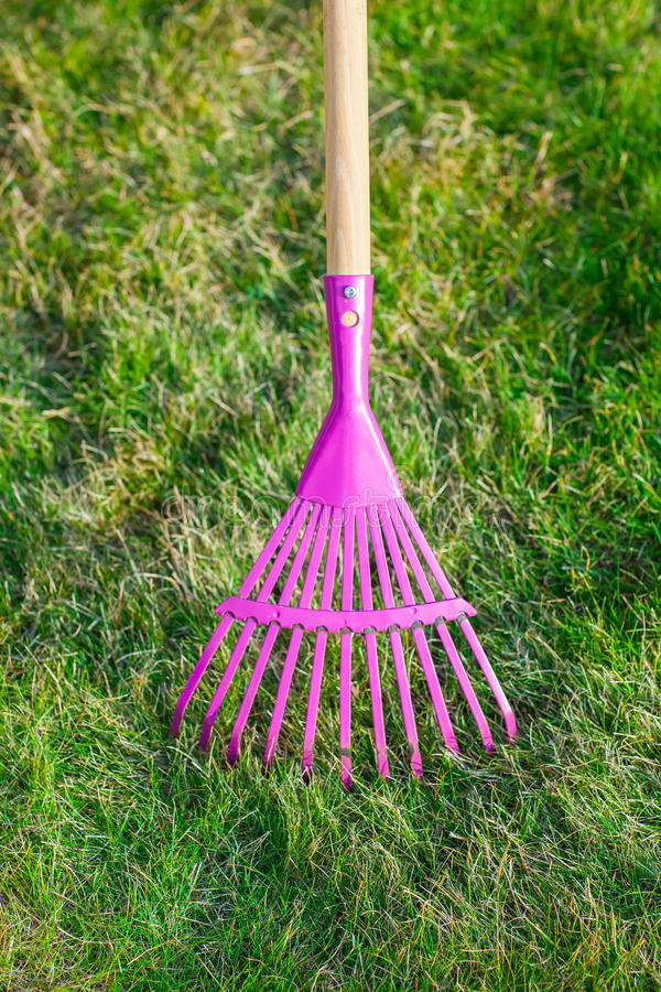 Cleaning green lawn by rake stock images