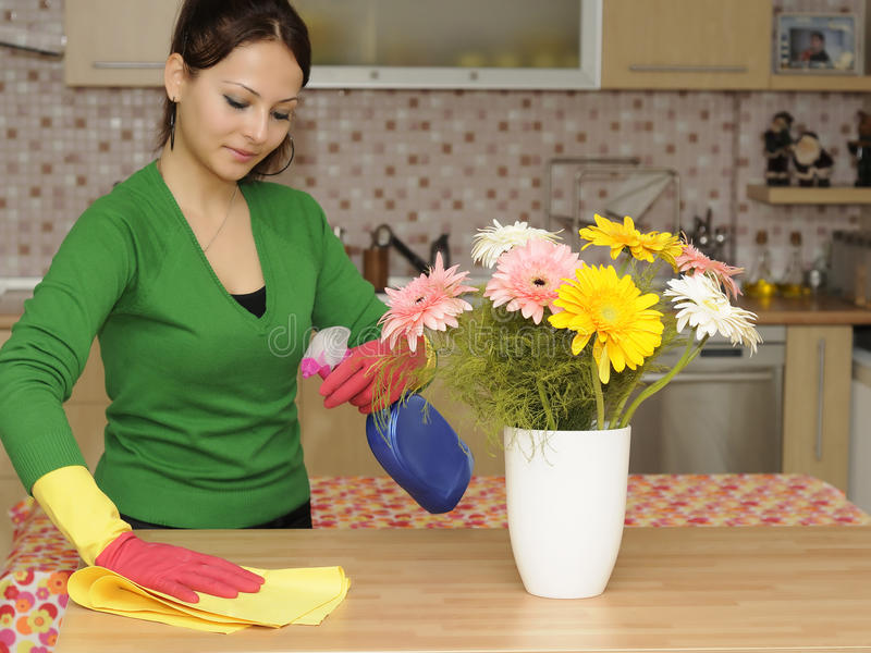 Download Cleaning the house stock photo. Image of bottles, gerbera - 11723566