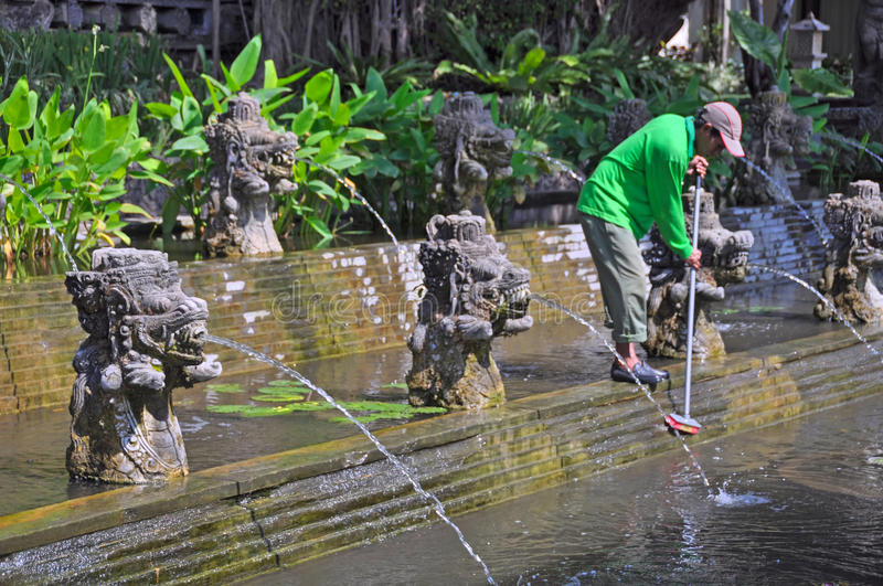 Download Cleaning The Lilly Ponds, Bali Indonesia Editorial Stock Photo - Image: 21475858