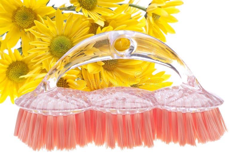 Download Cleaning Pojęcia Naturalna Wiosna Zdjęcie Stock - Obraz: 18464214