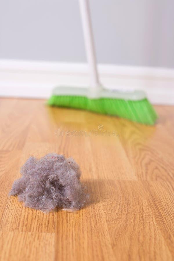 cleaningfjäder arkivfoto