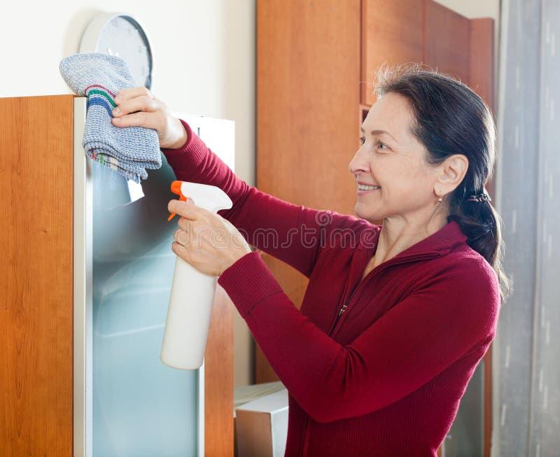Cleaninig de femme à la maison photographie stock libre de droits