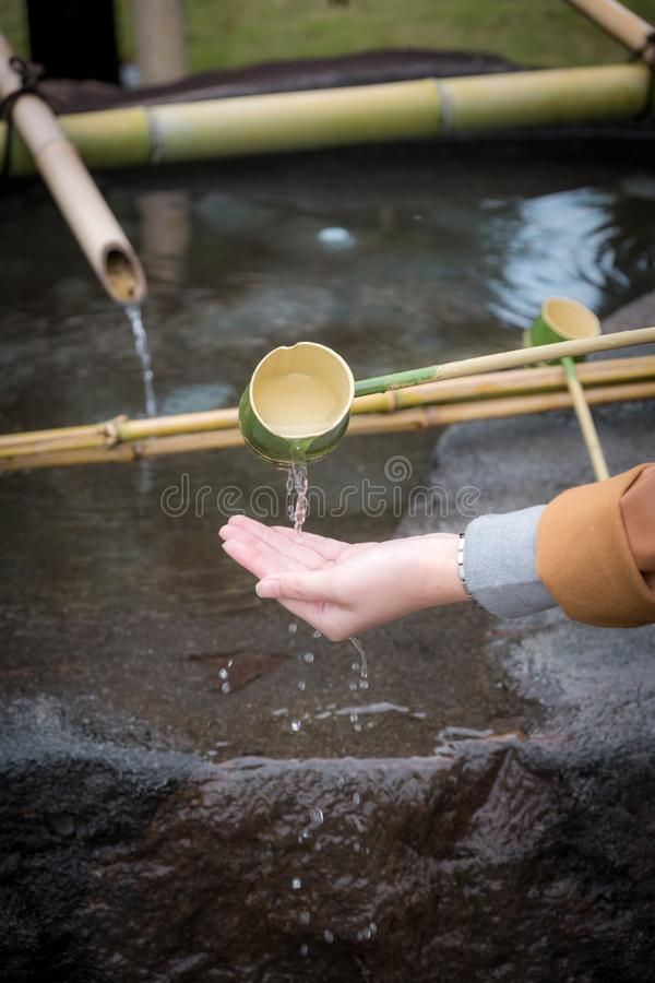 The Shinto Omairi cleansing ceremony by using water in bamboo scoop before enter to temple in Japan. Cleansing ceremony, The Shinto Omairi cleansing ceremony by stock photo