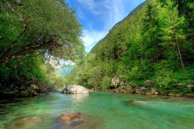 Clear Alpine river Soca. In Slovenian Alps royalty free stock photos