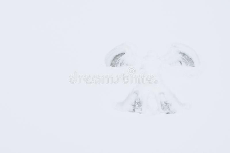 On the clear background of snow left a trace of an angel, a place for your inscription royalty free stock image