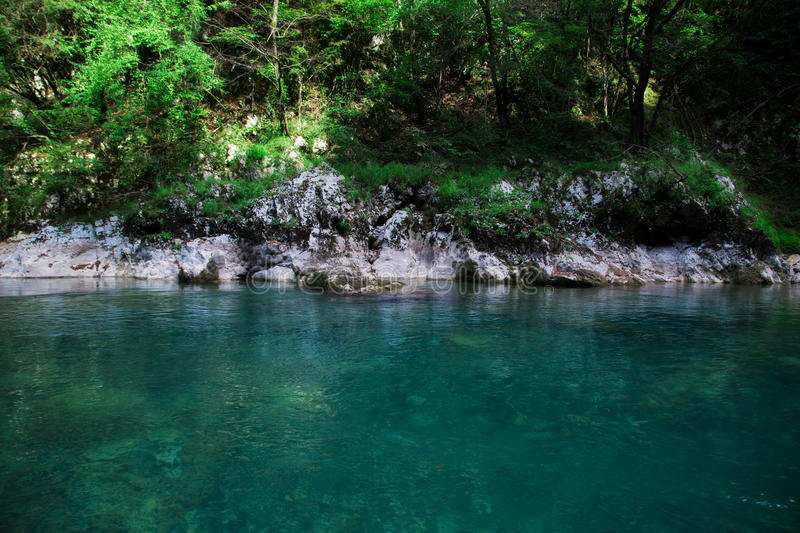 Clear blue river near green forest, nature landscape royalty free stock images