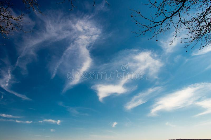 A clear blue sky backgrounds with clouds and tree branches royalty free stock photography
