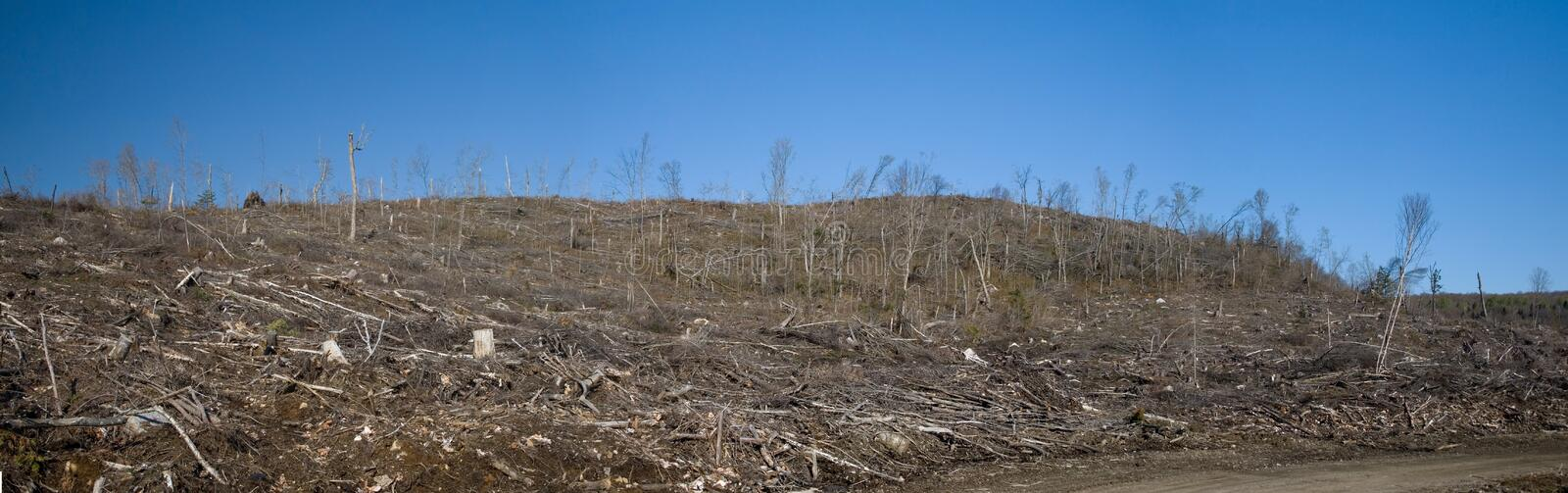 Clear Cutting stock images