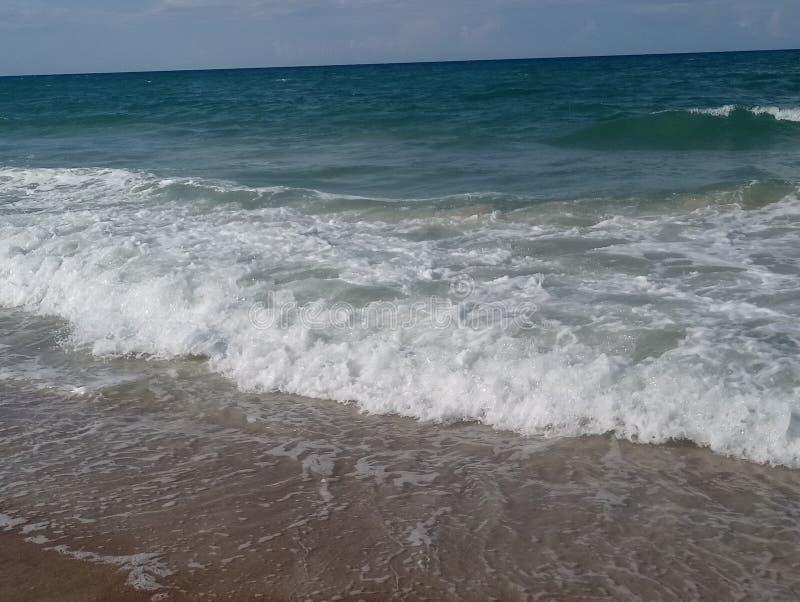 Clear Daytona Beach fotos de stock royalty free