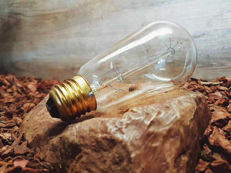 Clear Glass Light Bulb Free Public Domain Cc0 Image
