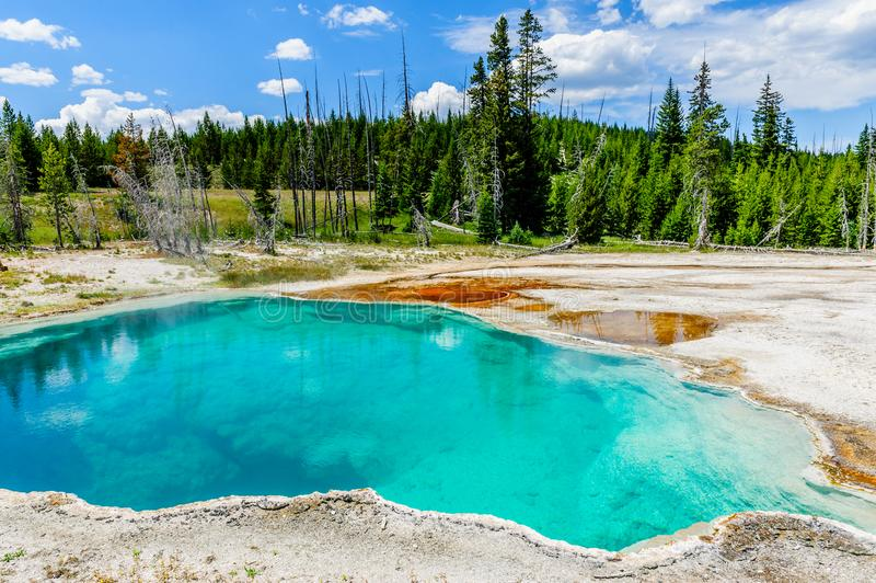 Clear lakes at West Thumb. Hot springs in the West Thumb area in Yellowstone National Park royalty free stock image