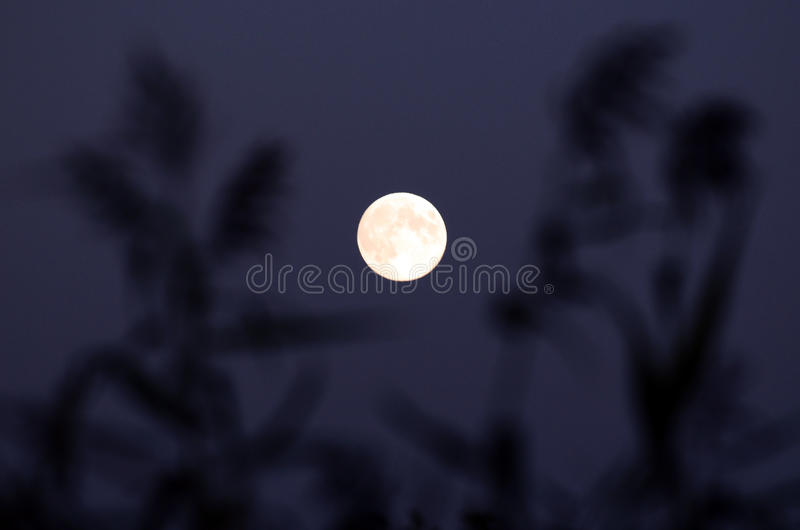 Download A Clear Moon stock image. Image of evening, astronomy - 26926213