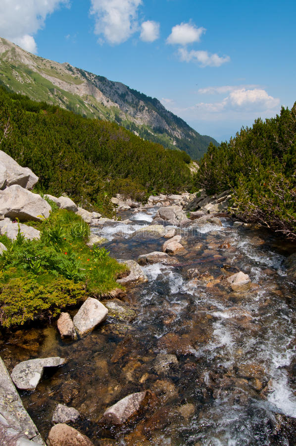Clear Mountain River royalty free stock images