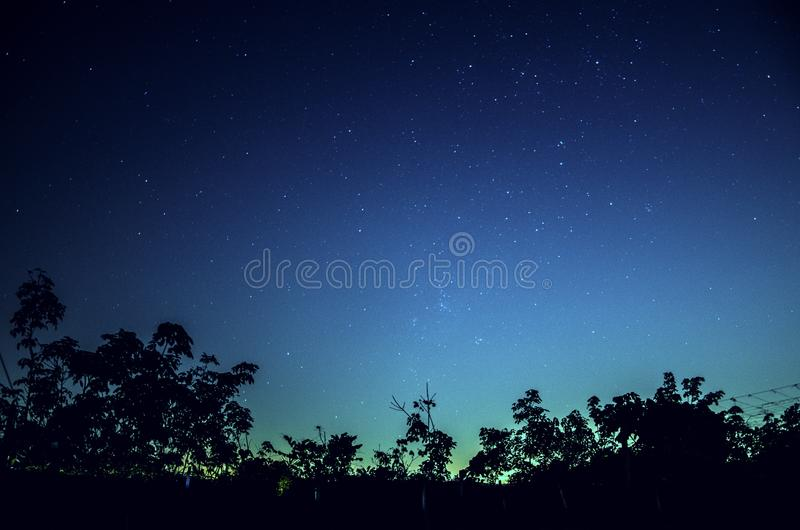 blue sky and the million of stars in the silhouettes foreground stock photography