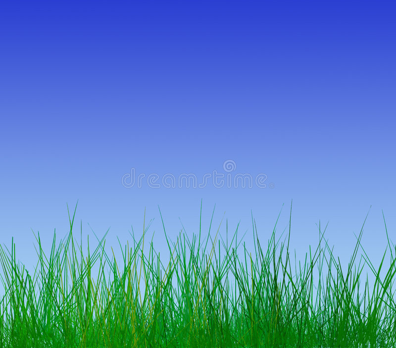 Clear sky in springtime. Close-up of young grass blades on cloudless blue sky stock illustration