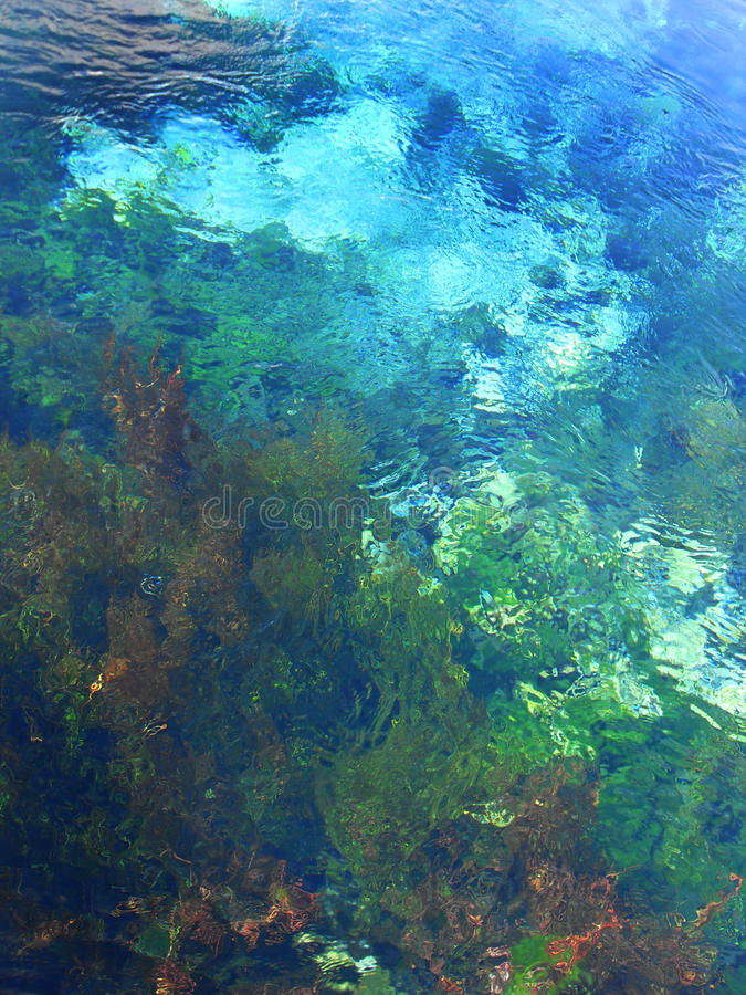 Clear Spring Water royalty free stock images
