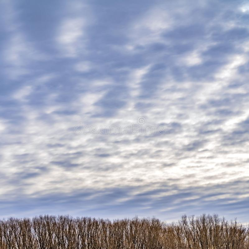 Clear Square Breathtaking sky filled with a layer of illuminated puffy clouds in winter royalty free stock photos