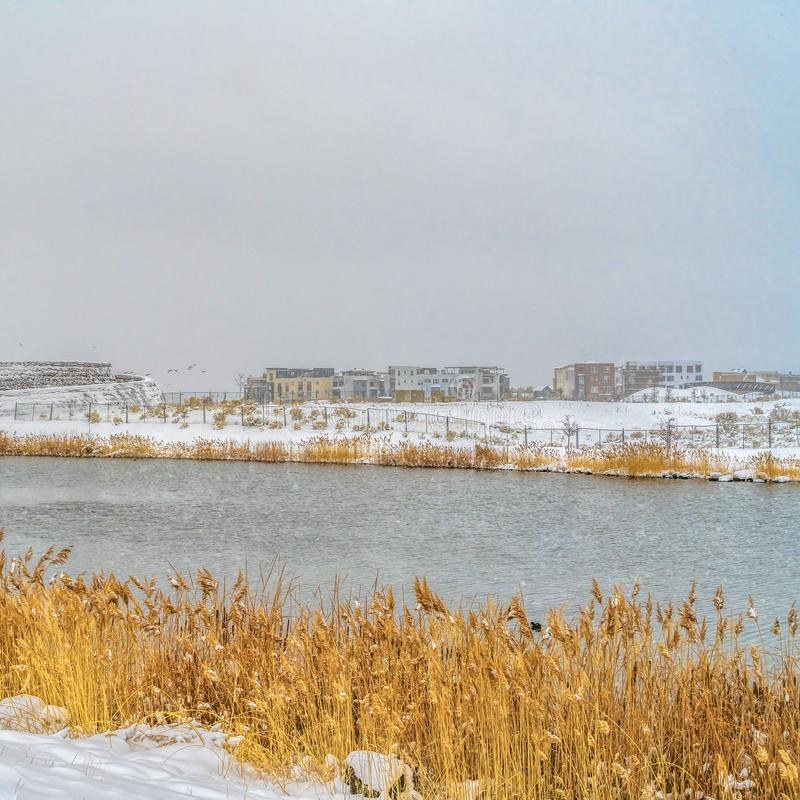 Clear Square A gleaming lake with grasses lining the shore in Daybreak Utah in winter stock photo