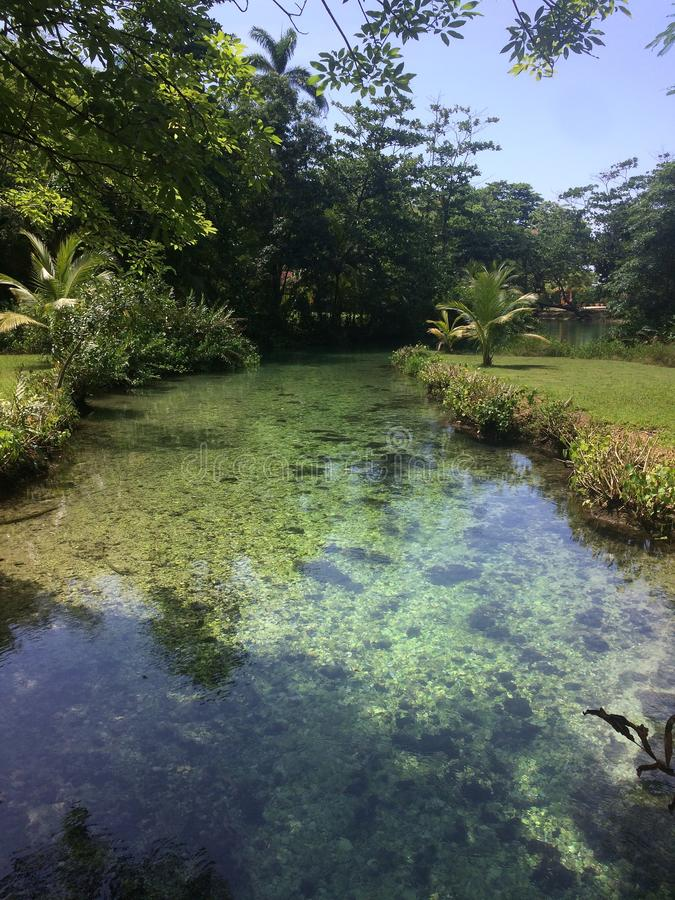 Clear water of the Frenchmen`s Cove river royalty free stock images