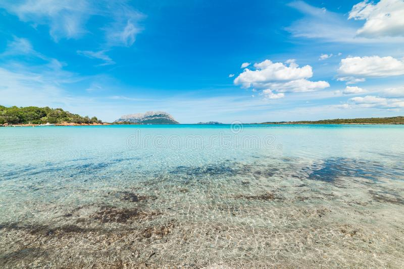 Clear water in Porto Istana shore in Costa Smeralda. Sardinia, Italy royalty free stock photography