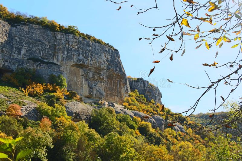 Cliff above autumn forest stock image