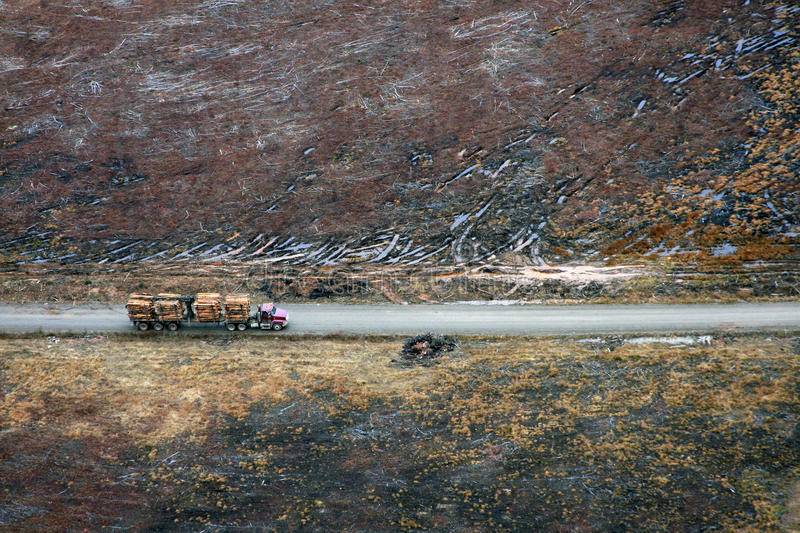 Clearcut. Logging truck with load of trees royalty free stock photography