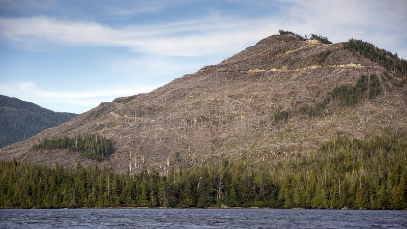 Clearcut Mountain. Logged in the Tongass National Forest in Southeast Alaska off the Inside Passage royalty free stock photo