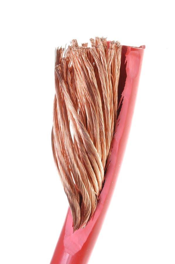 Cleared förkopprar kabel royaltyfri foto