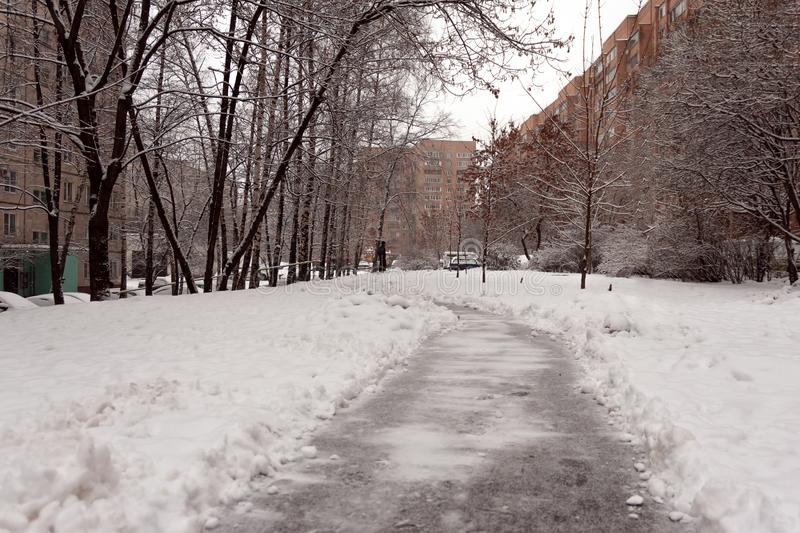 Cleared path in the yard of the house in a residential area. Heavy snowfall in the city.  royalty free stock image