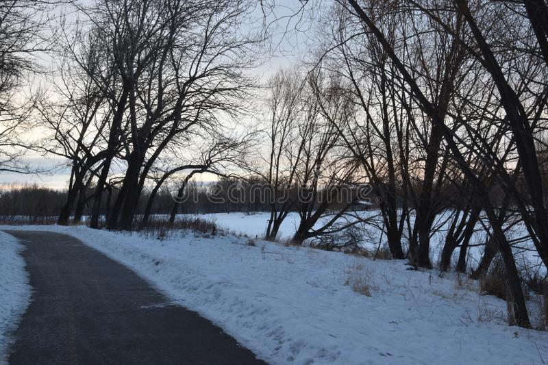 Cleared pathway in winter. Next to a pond stock photos
