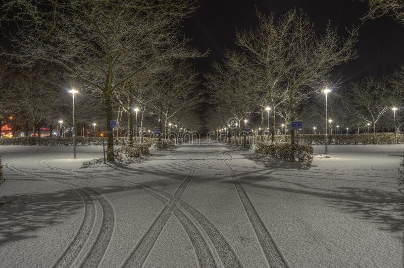 Cleared Road Near Trees and Light Post during Nighttime royalty free stock photo