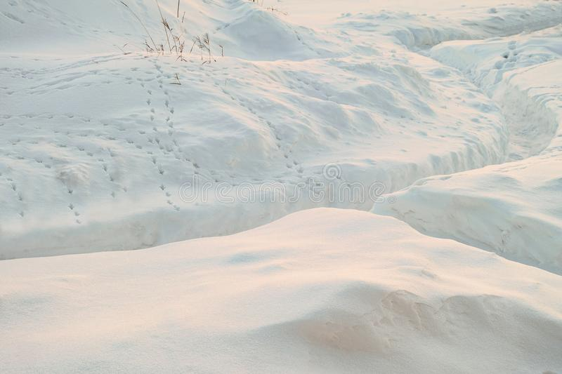 Cleared snowy footpath after heavy snowstorm. Traces of wild steppe birds on the snow. Winter background stock photos