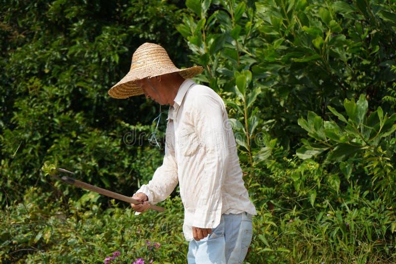 Clearning Land des asiatischen Landwirts stockbilder