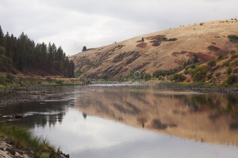 clearwater在河视图附近的爱达荷lenore 免版税图库摄影