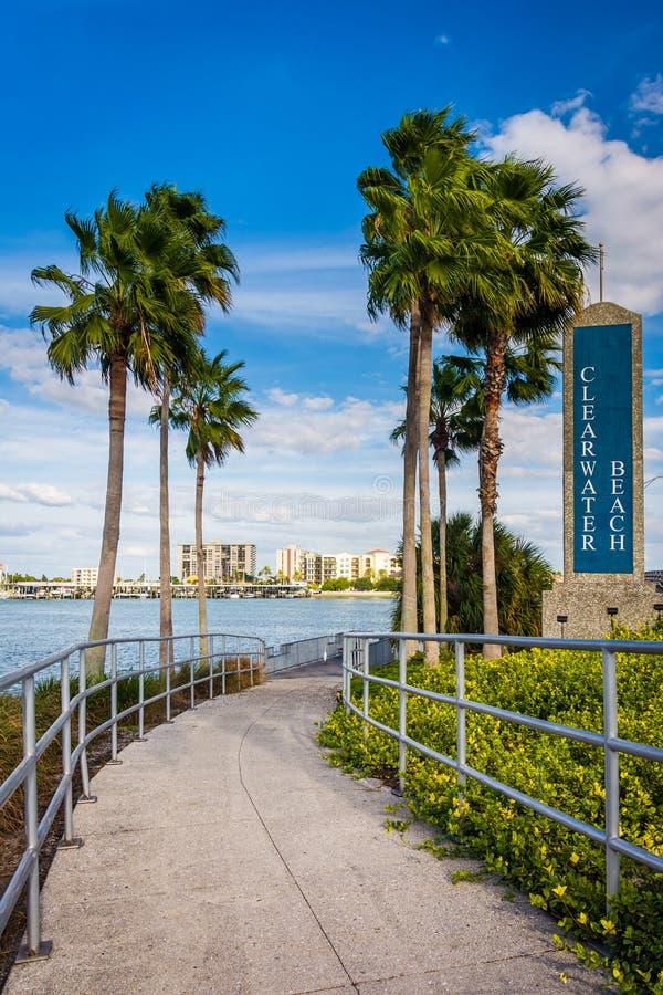 Clearwater海滩标志和棕榈树沿一条道路在Clearwater 免版税库存照片