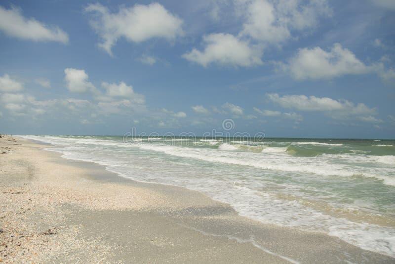 Clearwater,佛罗里达 免版税库存照片