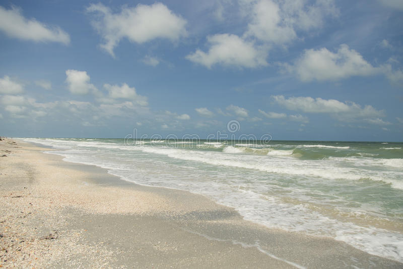 Clearwater, Флорида стоковые фотографии rf