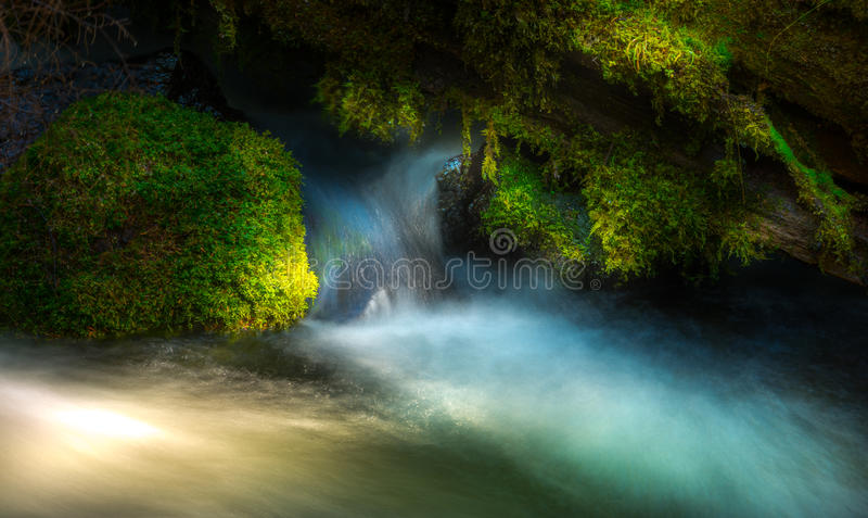 Clearwater Falls Umpqua National Forest royalty free stock image