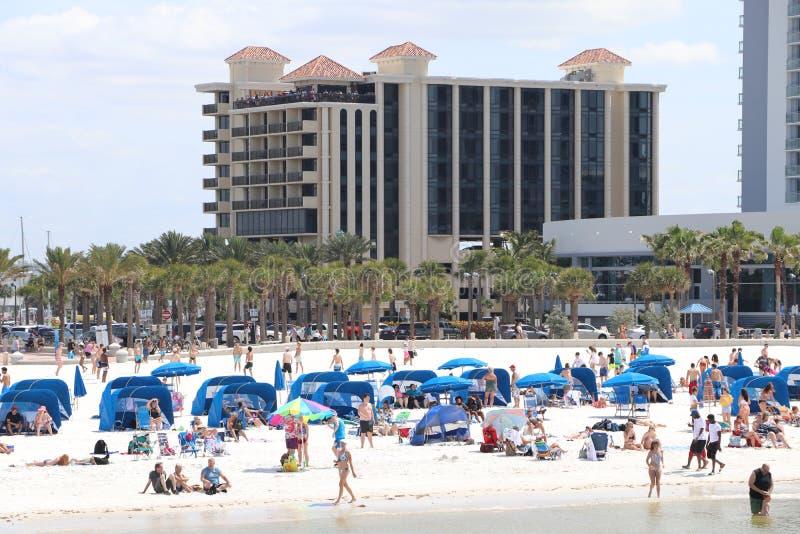 Clearwater strand under säsong för våravbrott fotografering för bildbyråer