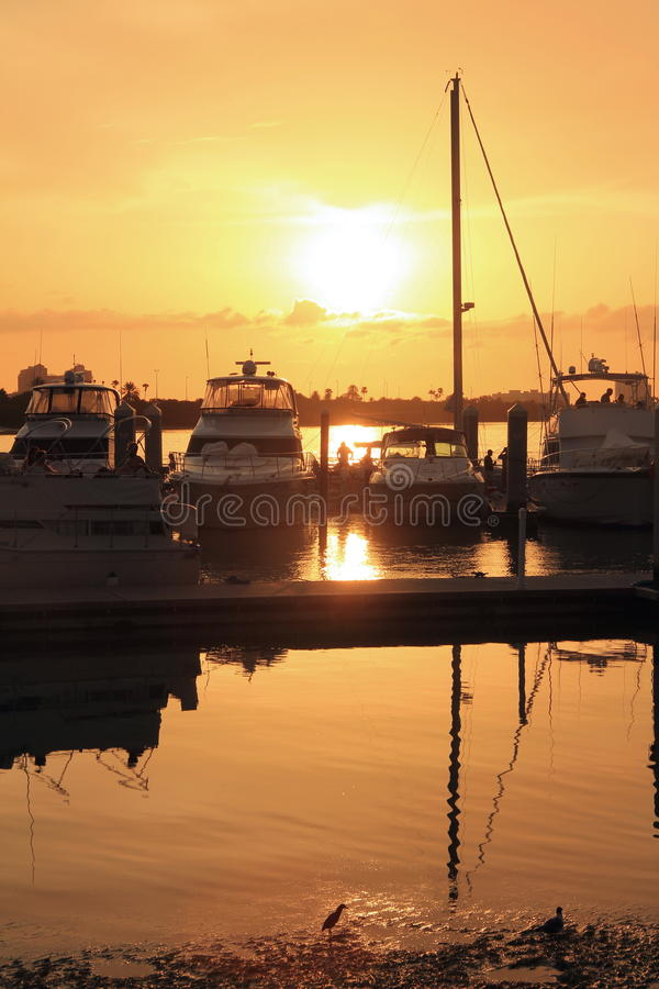 Clearwater Sunset. The sun sets in Clearwater, Florida, USA. Looking over the boat dock in the city at Harbourside Park royalty free stock photo